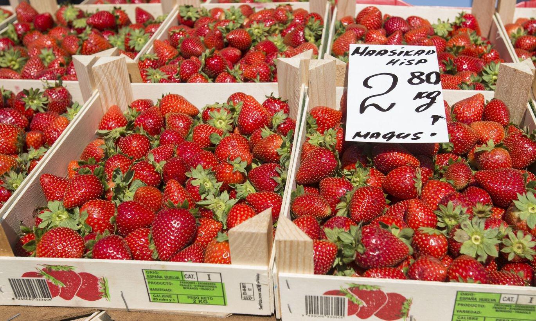 Teadlased hakkavad otsima Eesti maasikate sõrmejälge